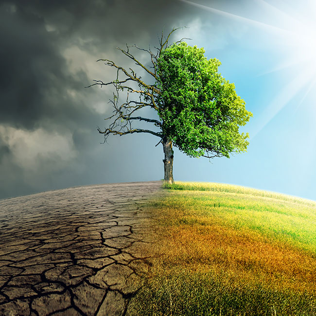 PPGPL's ESG strategy for managing climate change risk